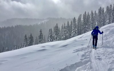 November 6, 2017 – Snowpack Update – Avalanche Bowl – Teton Pass