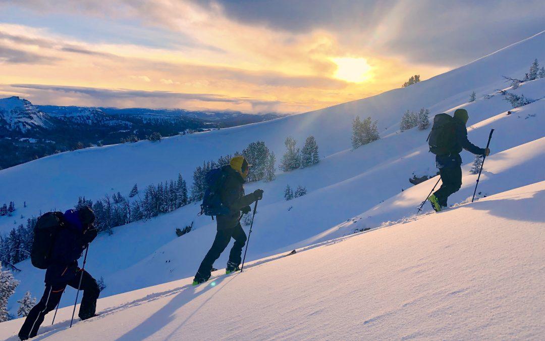 Snowpack Update – Dec. 2, 2018 – East Breccia / Togwotee Pass Area